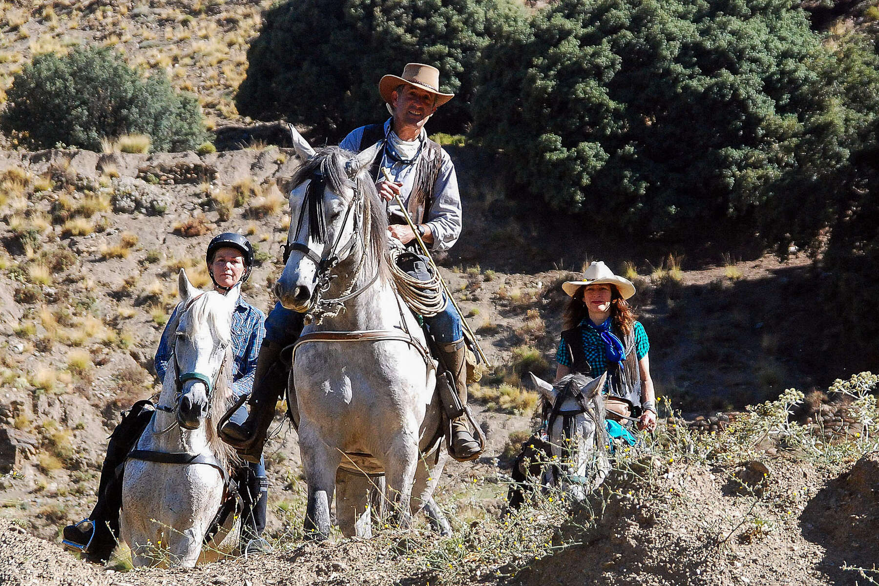 Andalucian horses on trail ride in Sierra Nevada