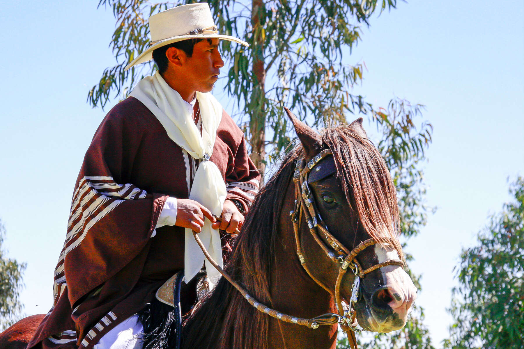 Discover the Colca Canyon trail on horseback