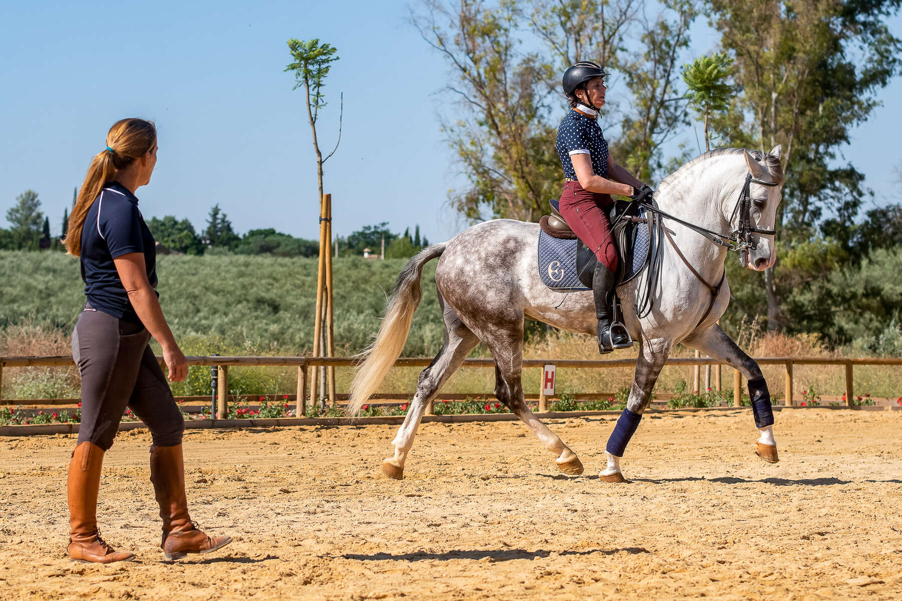 Practice Your Dressage Skills In Andalucia Southern Spain Equus Journeys
