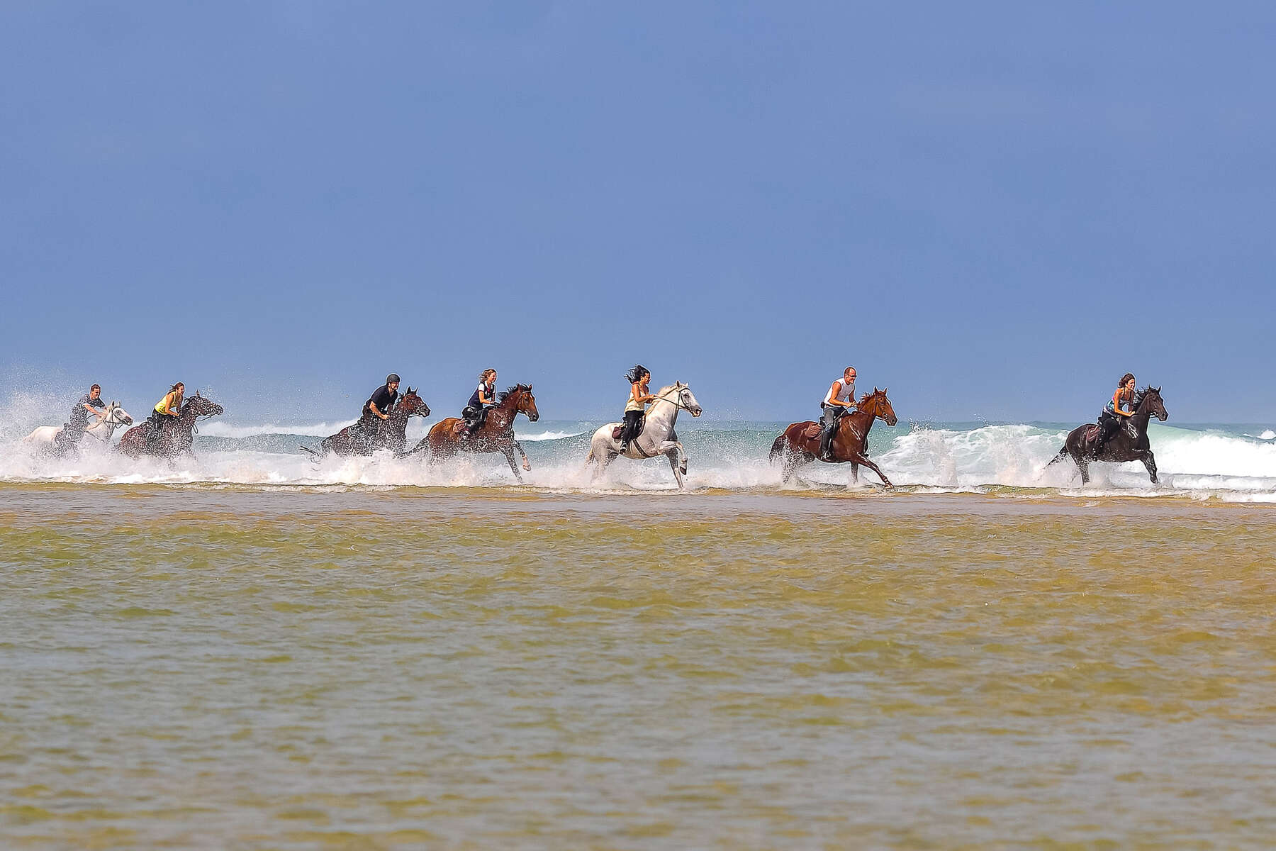 Horseback riders riding in the Atlantic Ocean in France