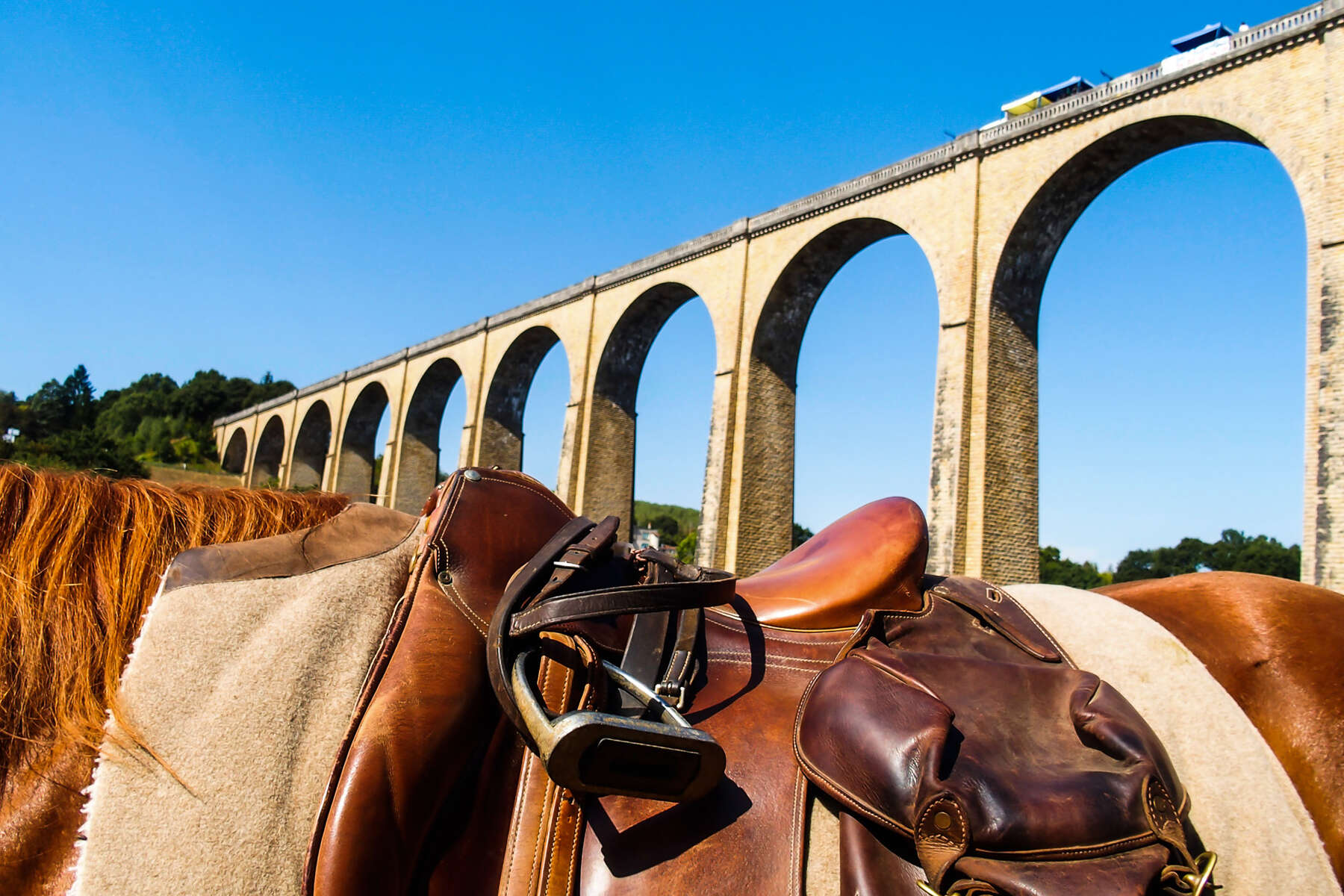Horseback riding in the Poitou