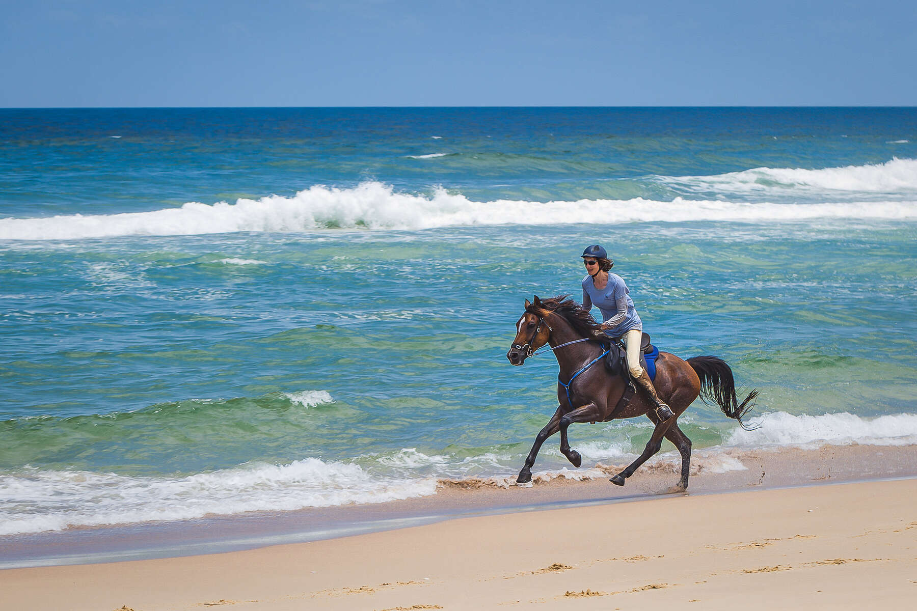Rider cantering on an Australian beach on an Arabian horse