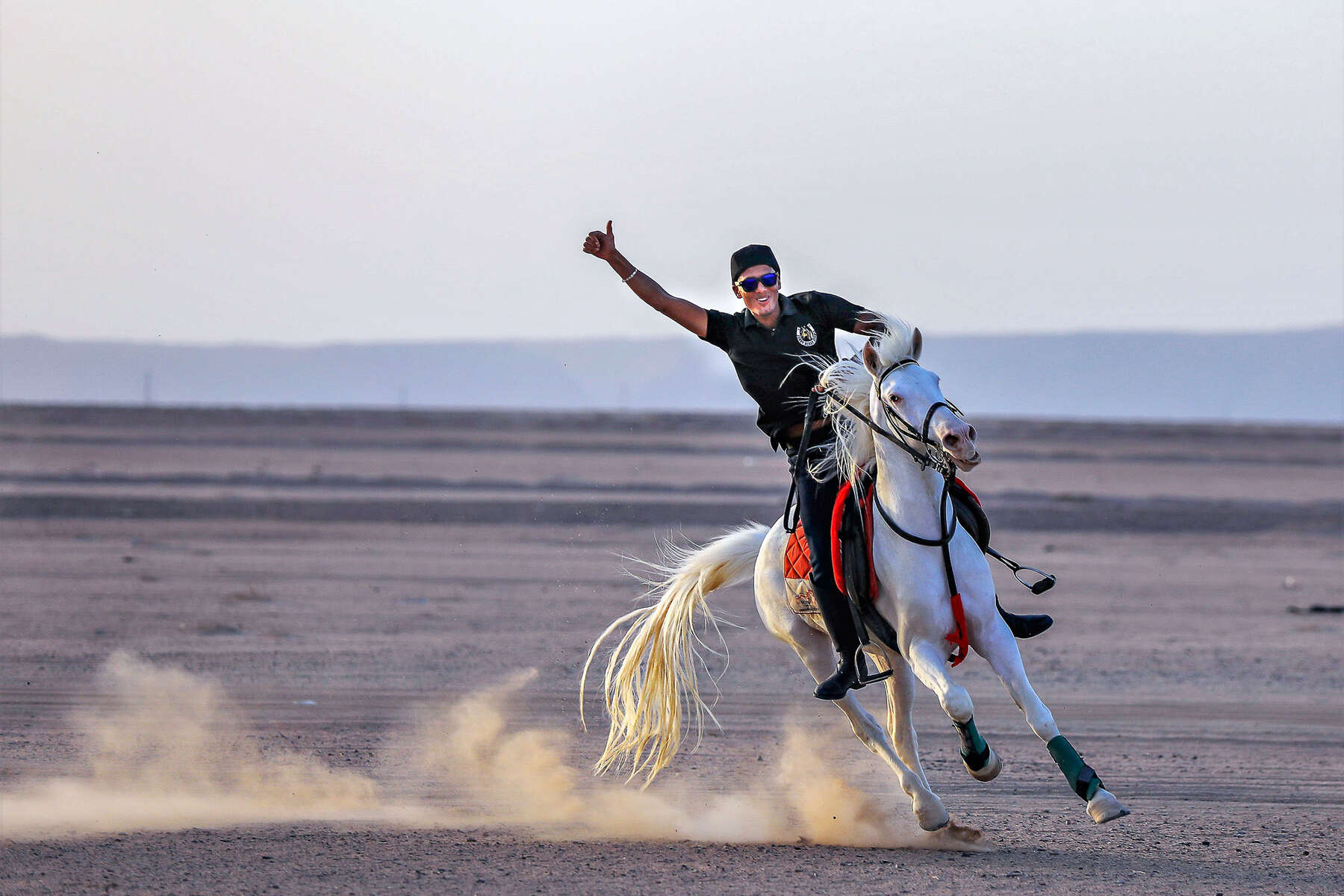 Rider galloping in the Egypt desert