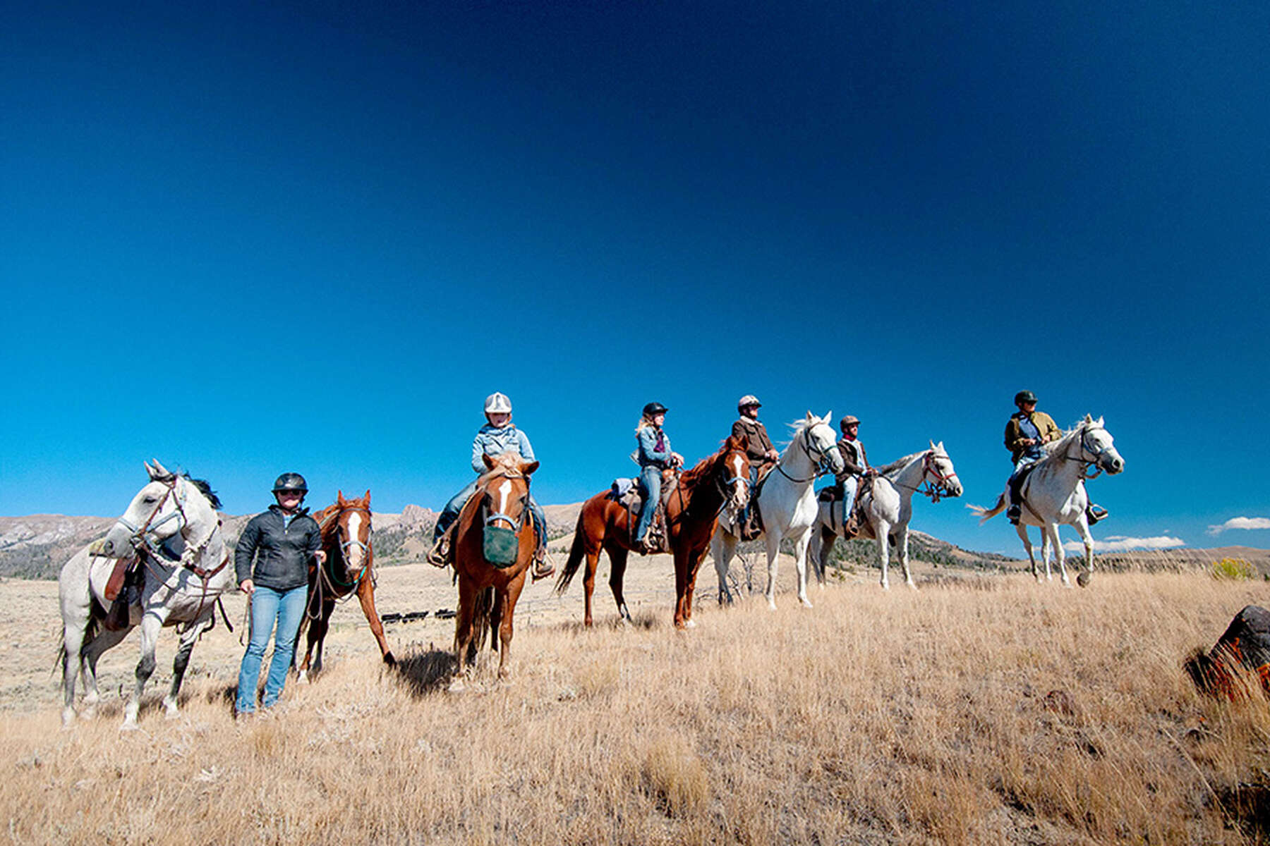 Riders and horses in Wyoming, USA