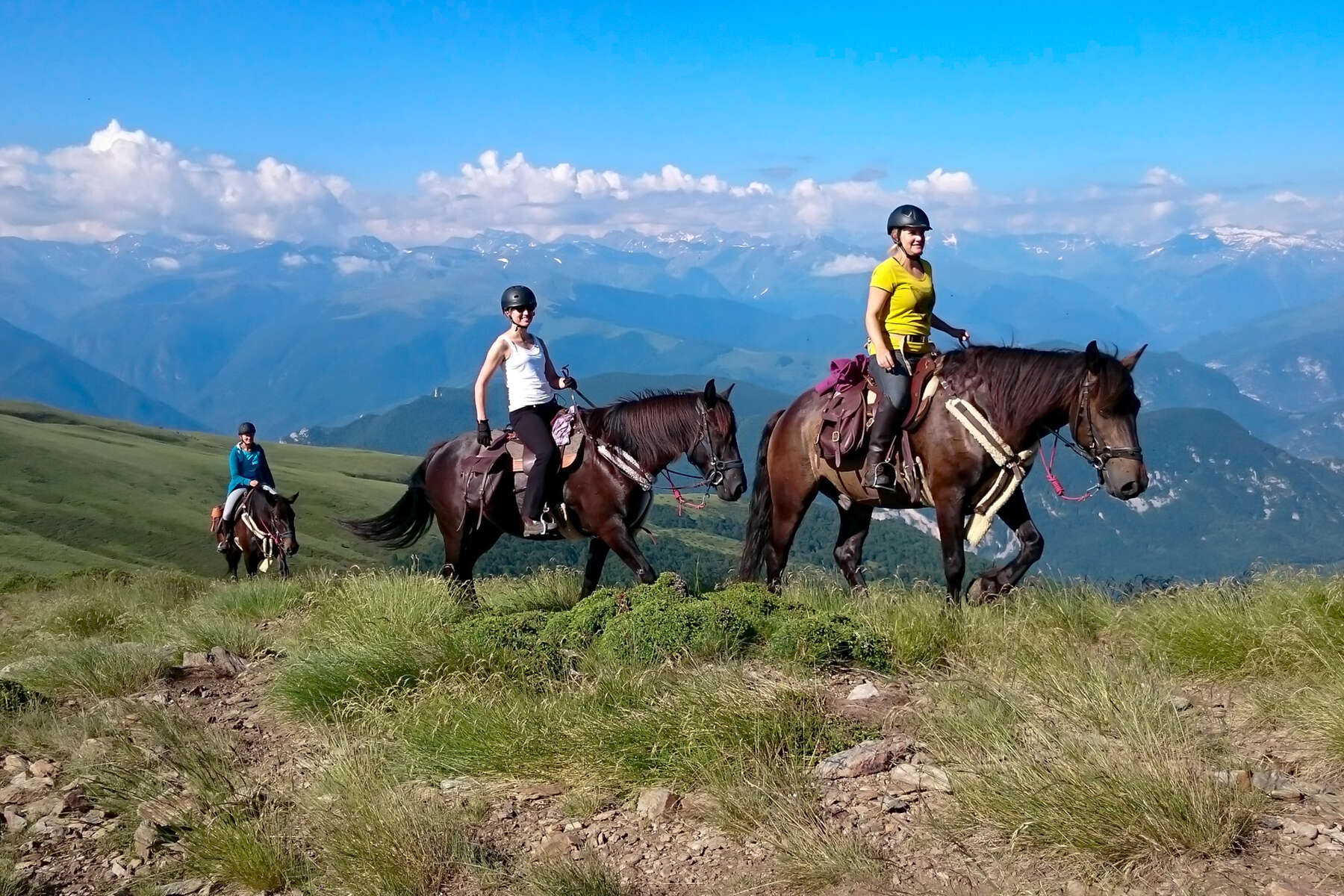 Riders and Merens horses in the Pyrenees on a trail ride