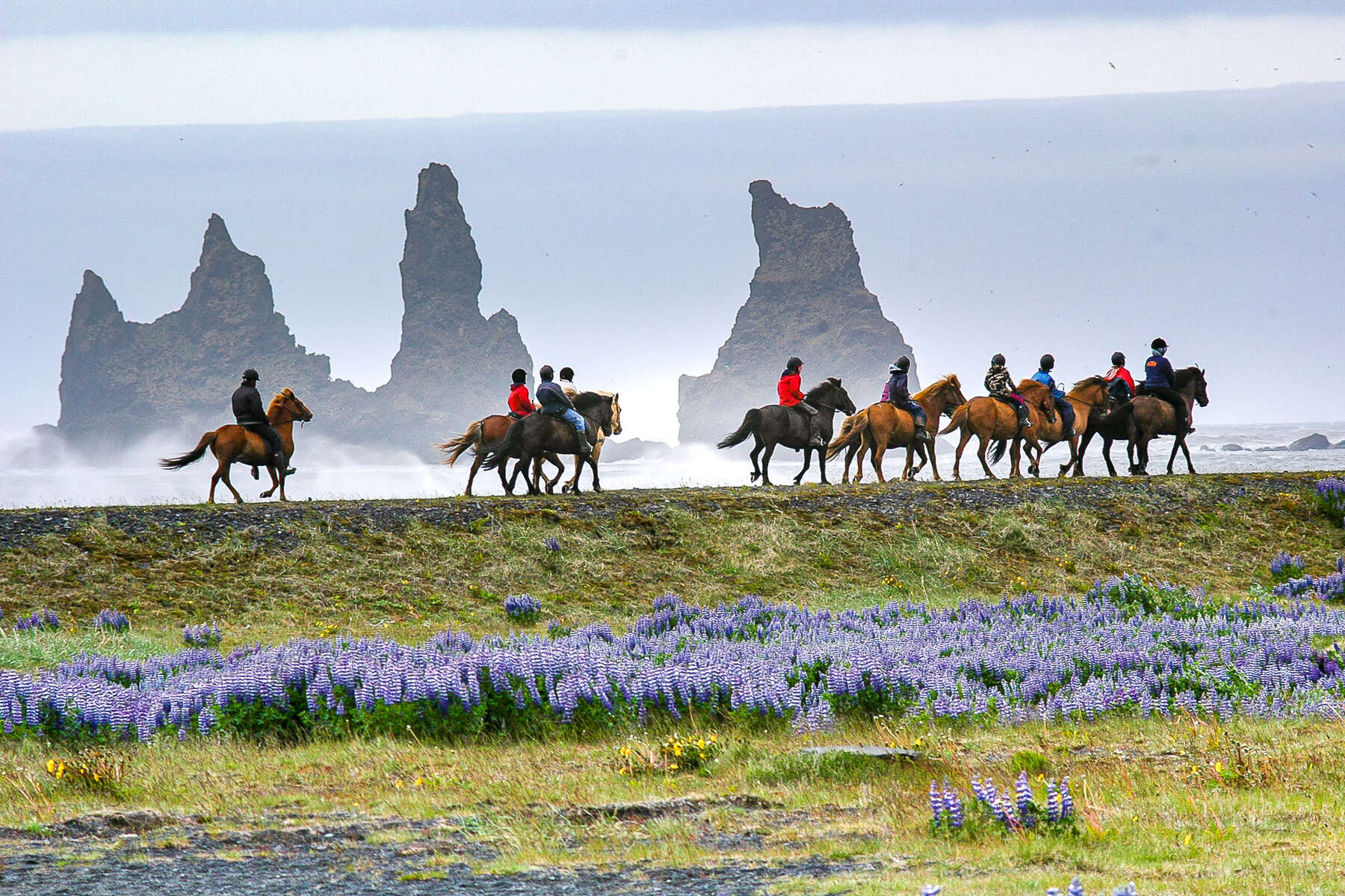 Riders enjoying a ride in Iceland