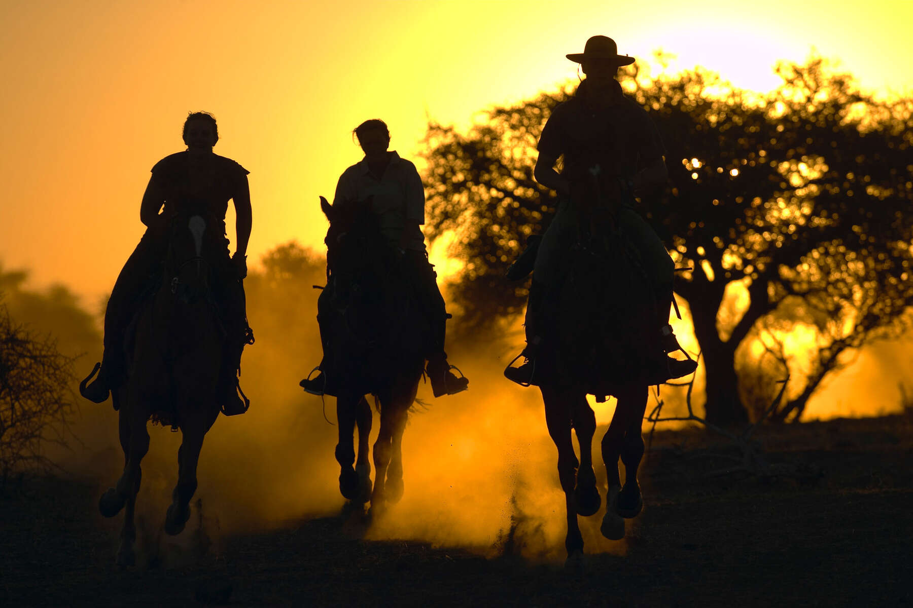 Riders racing on a horse safari