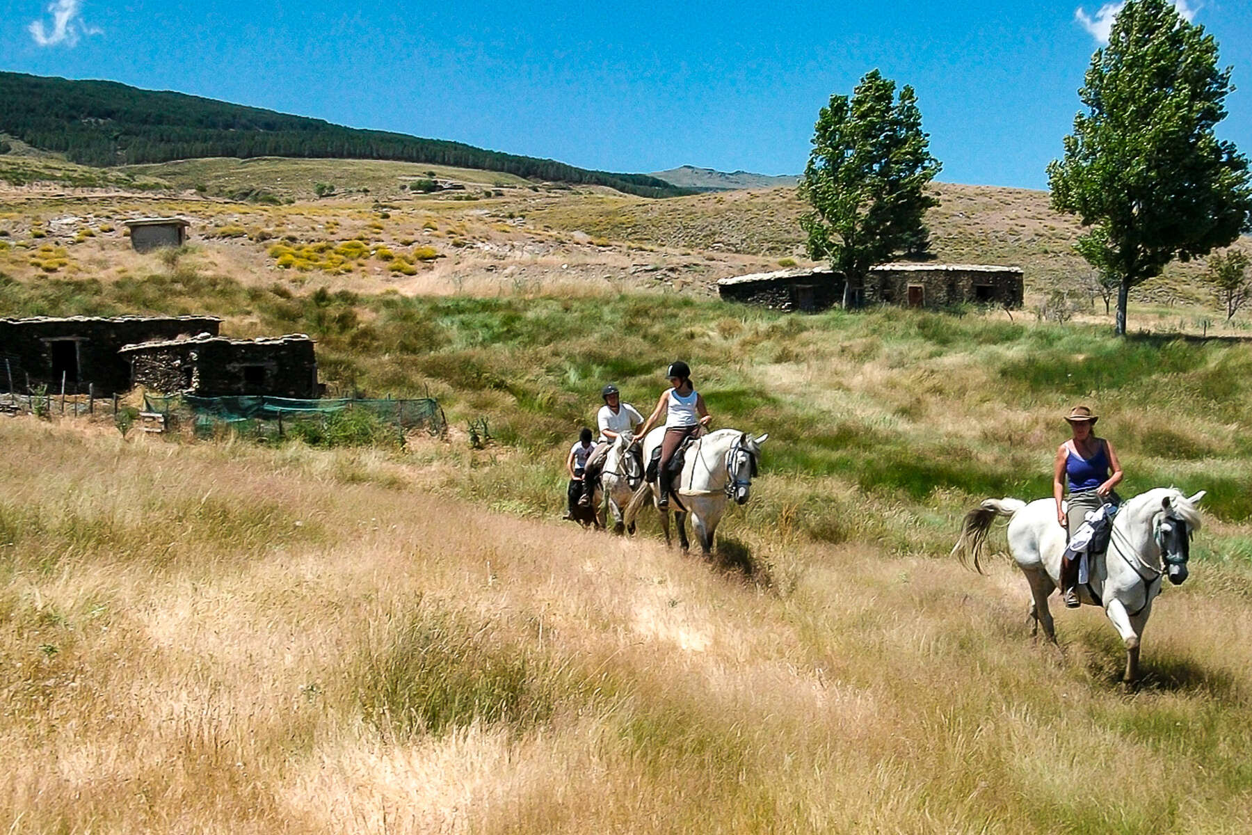 Trail ride through Spain on horseback