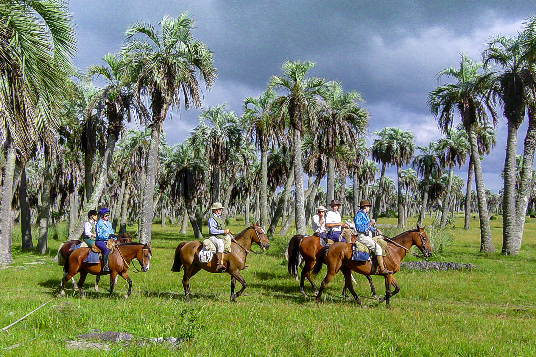 Trail riding on Criollo horses in Uruguay