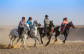 Experienced riders on a trail ride in Egypt
