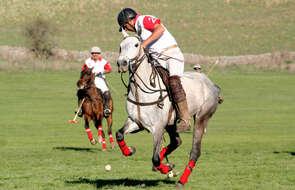 Polo player in Argentina, Los Potreros