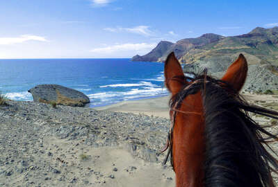 Beautiful photo of a Spanish beach seen between the ears of a horse