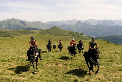 Cantering across the Pyrenees