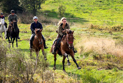 Cantering in France on a trail ride