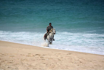 Cantering on the beach in Portugal