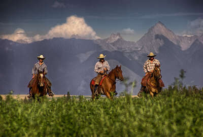 Cowboys and riders in Canada