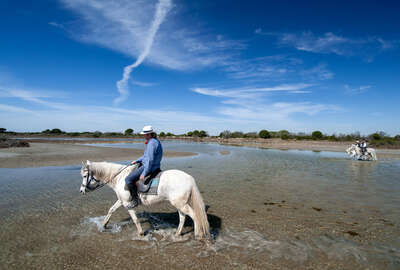 Gardian on horseback in Camargue