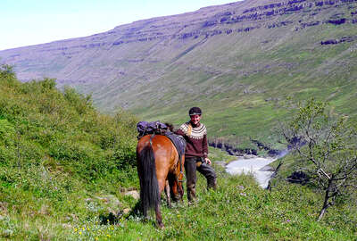 Happy horseback rider posing with her horse in Iceland