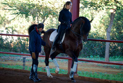 High school classical dressage in Spain and Rafael Soto