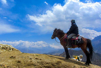 Himalayas trail rider and horse in Nepal
