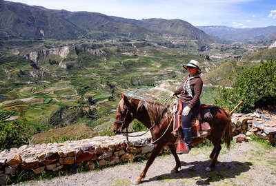 Horse and rider in the Andean mountains