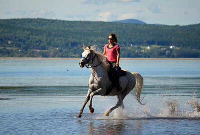 Horse rider cantering in the lake in Canada