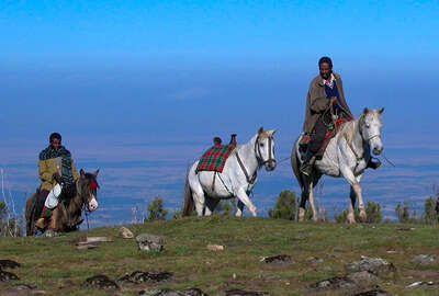 Horse riding holiday in Ethiopia