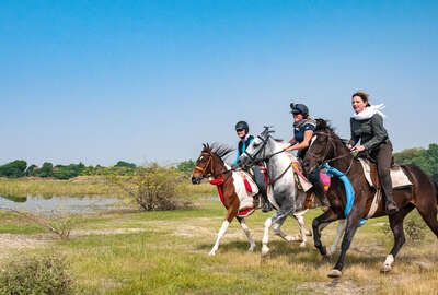 Horse riding holiday in India Aravalli hills and Pushkar