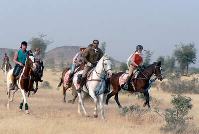 Horse trail ride through the Thar desert and Naguar Fair