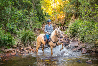 Horseback rider in a creek on horseback in Australia
