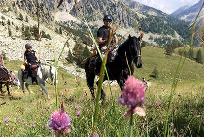 Horseback riding in the Alps