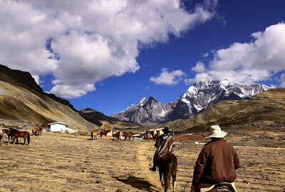 Horses and riders at camp on trail ride in Peru