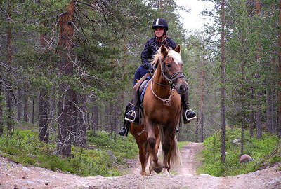 Lapland summer riding trail
