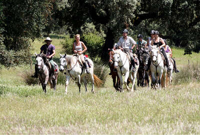 Lusitano kingdom riding trail, Portugal