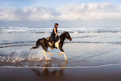 Rider cantering along the beach in South Africa