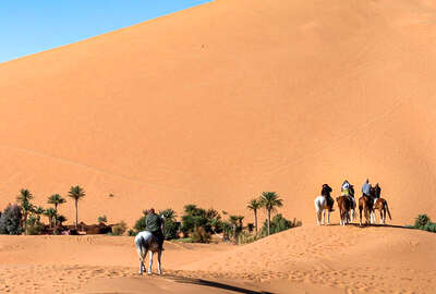 Riders and dunes in the Sahara
