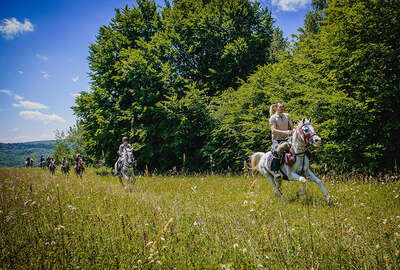 Riders in Romania on a riding holiday