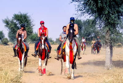 Riders on horseback in Rajasthan