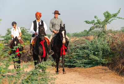 Riders riding across Rajasthan on beautful Marwari horses
