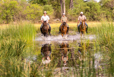 Riding in the floodplains of the Okavango Delta