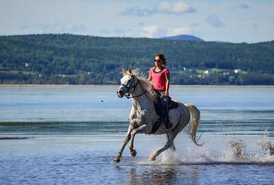 Riding in the water in Gaspe, Canada