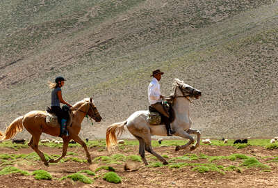 Two riders at a canter in Morocco