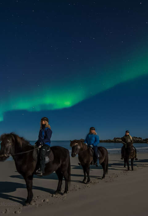 Riders riding icelandic horses under the northern lights