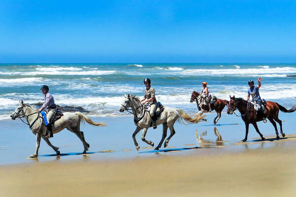 A group of riders smiling and cantering on the beach