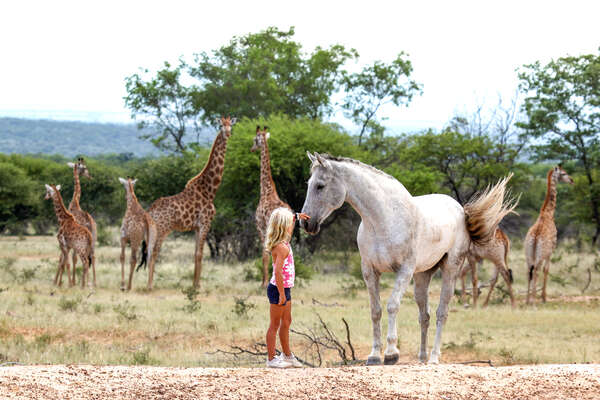 A young girl with a horse in the African bush during a riding safari holiday