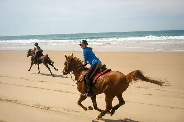 Beach riding in Australia on fit endurance horses