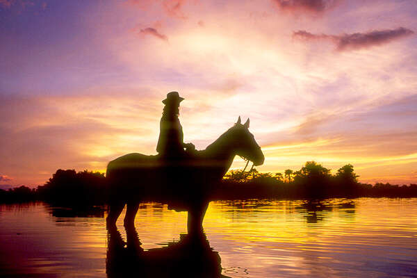Botswana and horse in sunset