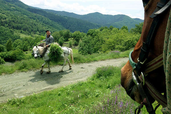 Bulgarian on his horse