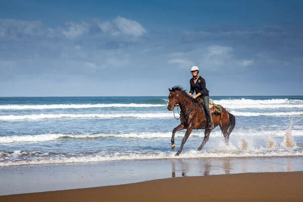 Cantering along the Wild Coast in South Africa