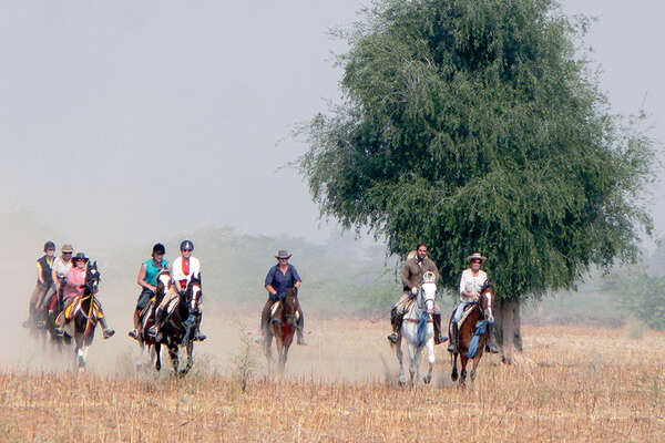 Cantering in Rajasthan